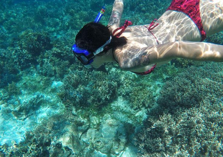 Snorkeling sulla barriera corallina di Pamilacan, Filippine