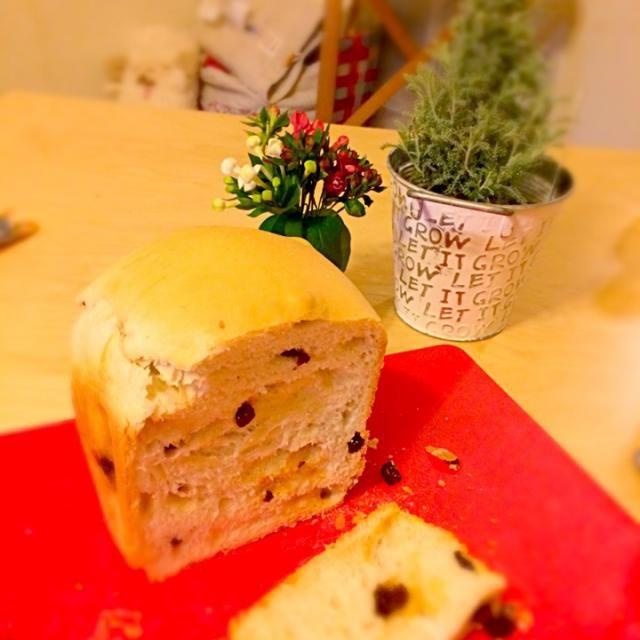 フィグの酵母と自家製カスピ海ヨーグルトから作ったクイックヨーグルト酵母でふっくら〜〜〜(*☻-☻*) 美味しいぶどうパンが焼けました〜♡ - 13件のもぐもぐ - ぶどうパン by uilanikitchen