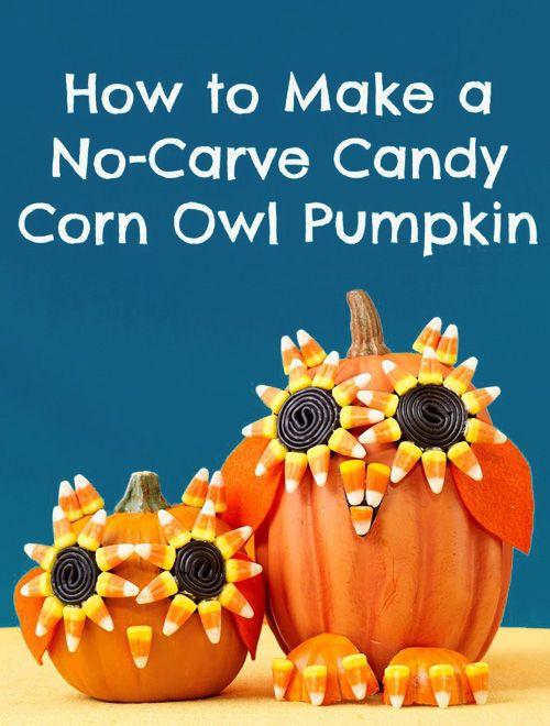 Candy corn No-Carve Halloween Owl Pumpkins