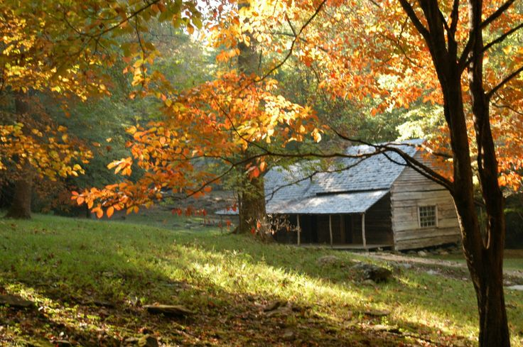 Fall In The Smokies Ogle Cabin On The Historic Roaring
