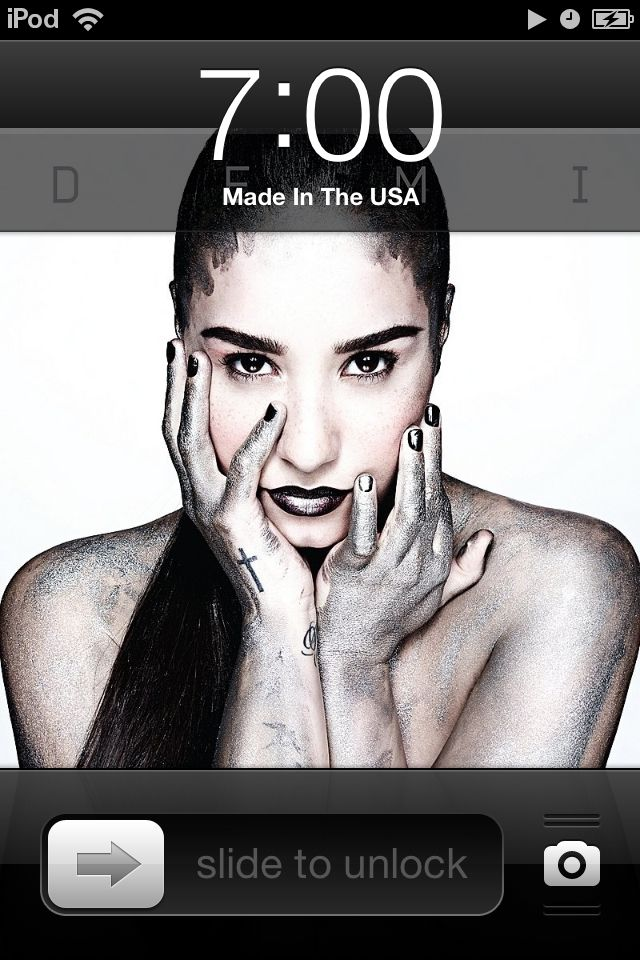 I love the song made in the u.s.a