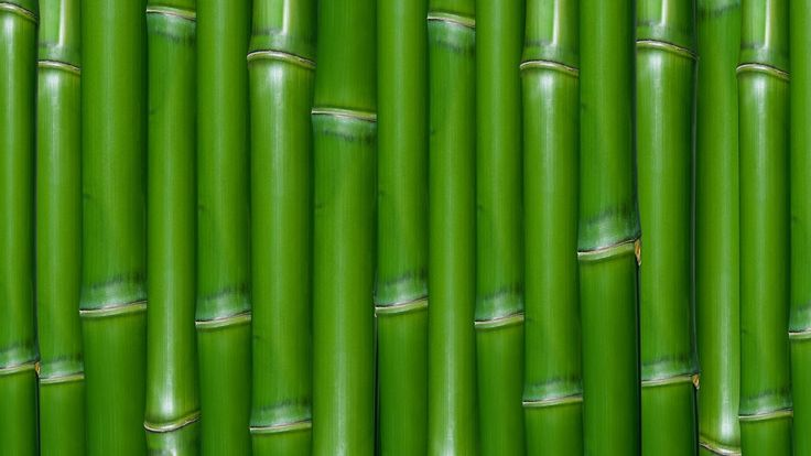 The scientist have proven that bamboo vinegar is very effective for eyelash growth.