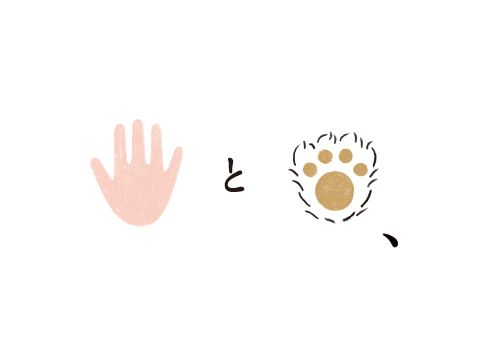 てとて | Works | Kishino Shogo(6D)-木住野彰悟