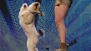 Ashleigh and Pudsey - Britain's Got Talent 2012 audition - UK version, via YouTube.