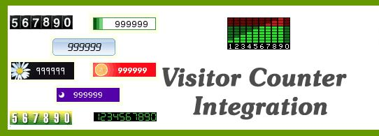 How to add free visitor counter in your website?