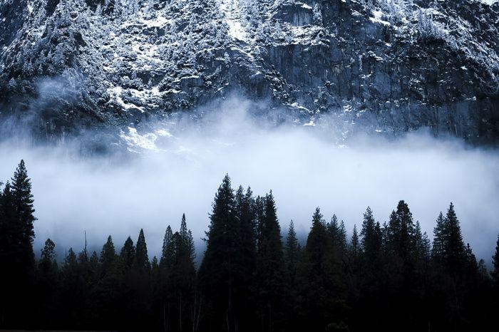 """""""Turned My Back On Yosemite."""" by Wasim Muklashy -  #fstoppers #Landscape #yosemitenationalpark #yosemite #yosemitevalley #nationalpark #halfdome #elcapitan #rockclimbing #alexhonnold"""