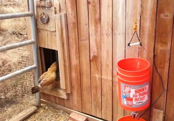 A Water Powered Automatic Chicken Coop Door Opener