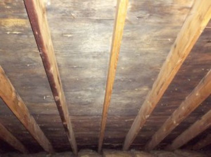 20 Best Restoration Images On Pinterest  Refurbishment. How To Open An Event Planning Business. Online Game Development Courses. City Of Forney Utilities Purified Water Cooler. Auto Insurance Conway Ar Marketing List Email. Health Net Medicare Plans Irs Appeals Process. Austin Community College Classes. Free Credit Counseling Agencies. Elder Law Attorney Michigan Turkey Call Box