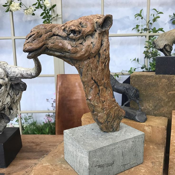 Camel Head Female 2017 cast by the foundry just in time to be exhibited at Chelsea Flower Show this year. #camel # #arabian #eastern #uae #exhibition #chelseaflowershow #rhschelsea #rhs #rhschelsea2017 #today #chelsea #london #limitededition #bronze #bronzesculpture #art #sculpture #hotday #sunnyday #happyfriday #fridayfeeling #weekend