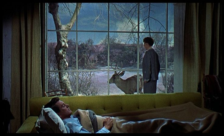 the use of mise en scene in all that heaven allows a movie by douglas sirk All that mise en scène allows: douglas sirk's expressive use of gesture:   .