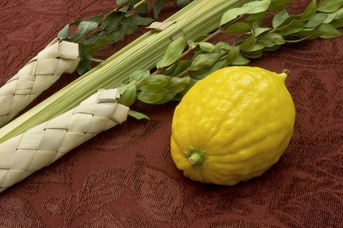 Fantastic significance of the lulav and etrog