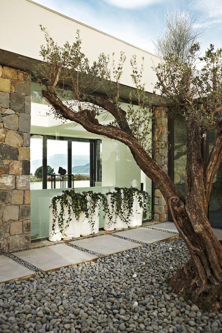 Bamboo, design Tous Les Trois