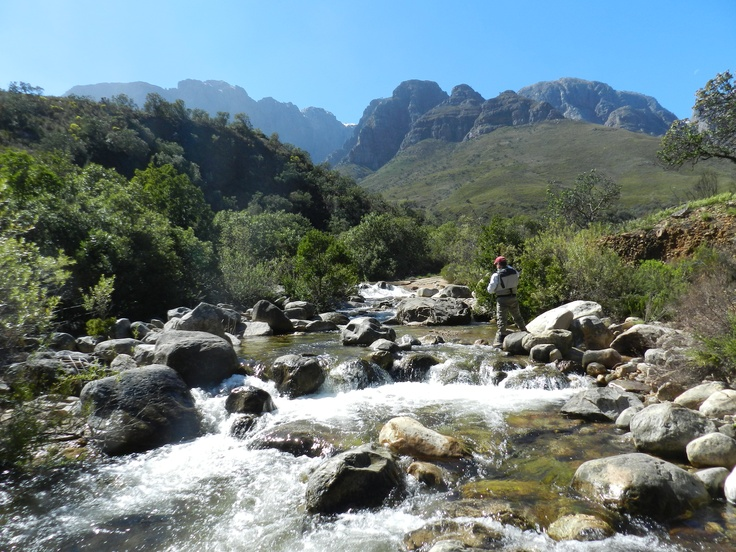 Fly fishing near Capetown, South Africa.