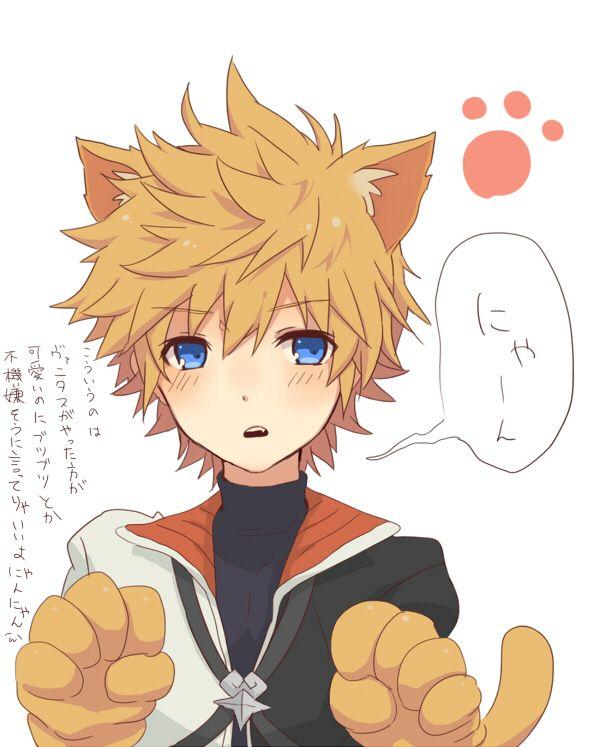 Tags: Anime, Roxas, Organization XIII, Kingdom Hearts II, Kingdom Hearts 358/2 Days