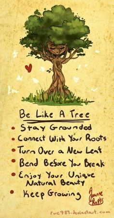 Image result for quote tree