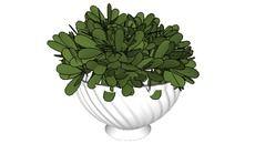 Plantas e vasos - 3D Warehouse
