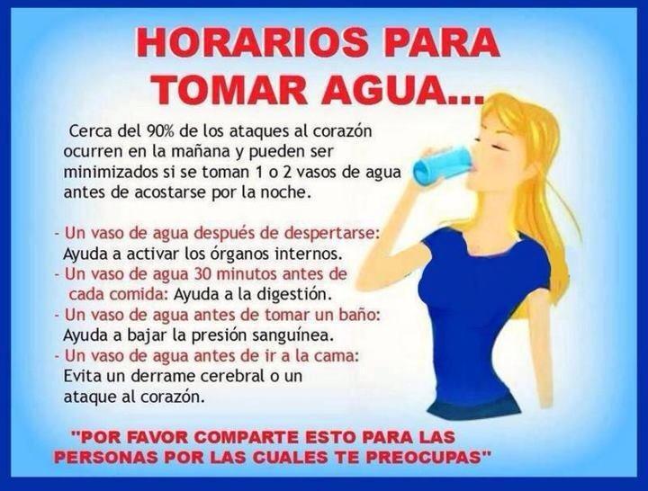 Beber agua adelgazar porque in english