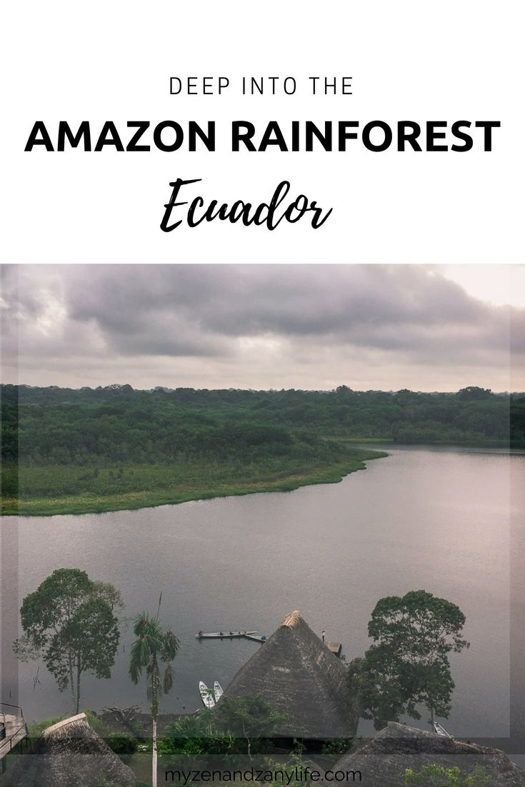 Amazon rainforest| Amazon jungle of Ecuador | Amazon forest luxury experience | Things to do in Ecuador| Things to do in Amazon| Explore Amazon rainforest