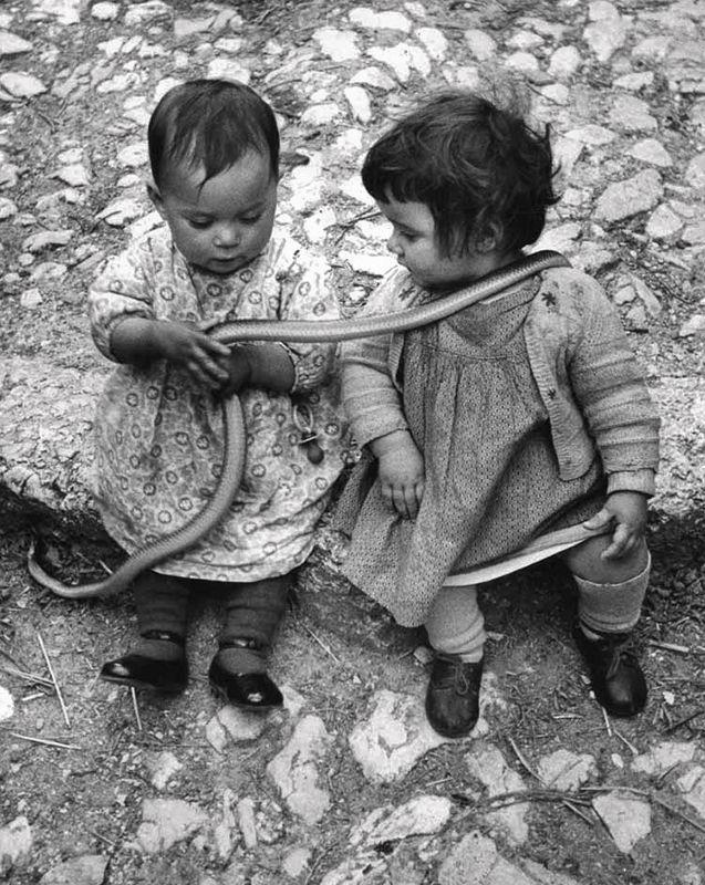 David Seymour, Two children with a snake, San Domenico in Cocullo, Italy, 1951.
