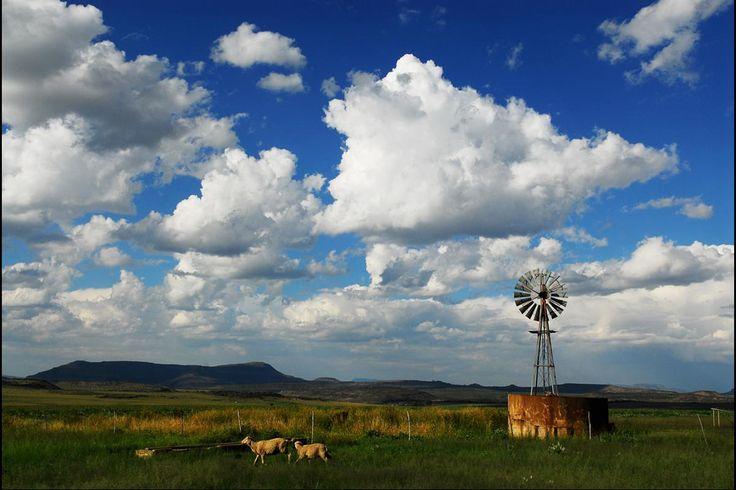 Natuurskoon en doendinge in oorvloed by Mooivlei Gasteplaas in die Oos-Kaap
