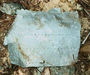 Aluminum Debris from Amelia Earhart's Plane Found | IFLScience