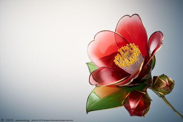 今年は赤椿で始まり赤椿で終わりたいと思います。侘助の定義には「葯が退化して花粉を作らないこと」とあるのですが、黒侘助は花粉を作るのになぜか侘助の名がつけら...
