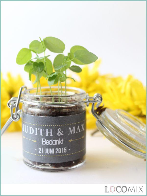 Hét bloemzaad bedankje van LocoMix; de groene weckpotjes! De groene huwelijksbedankjes zijn kleine glazen potjes gevuld met bloemzaadjes! Kiezen jullie voor passiebloem, zonnebloem, aardbei of andere zaadjes? Met de gepersonaliseerde wikkel die om het potje heen komt, zijn de huwelijksbedankjes met bloemzaadjes helemaal af!