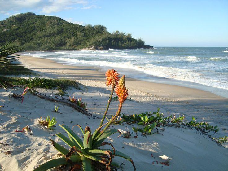 Praia da Ferrugem – pousadas em Garopaba