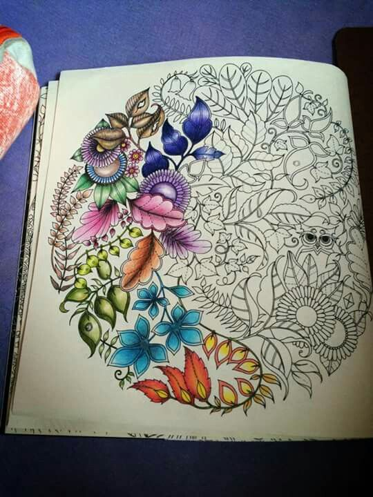 Jardim Secreto --> If you're in the market for the top-rated coloring books and supplies including watercolors, colored pencils, gel pens and drawing markers, logon to http://ColoringToolkit.com. Color... Relax... Chill.
