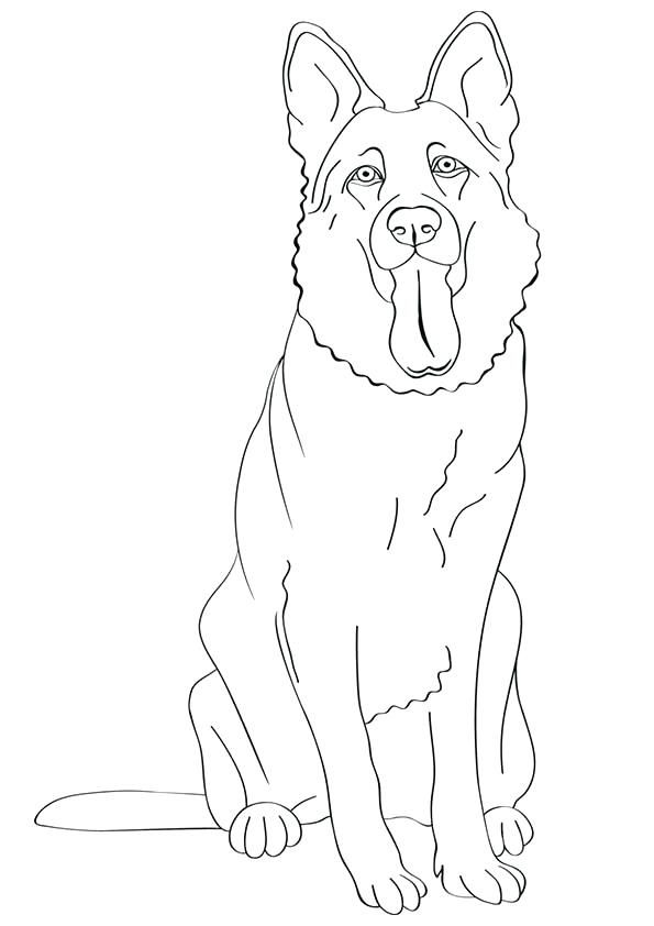 dogs and puppies coloring pages coloring pages of cute