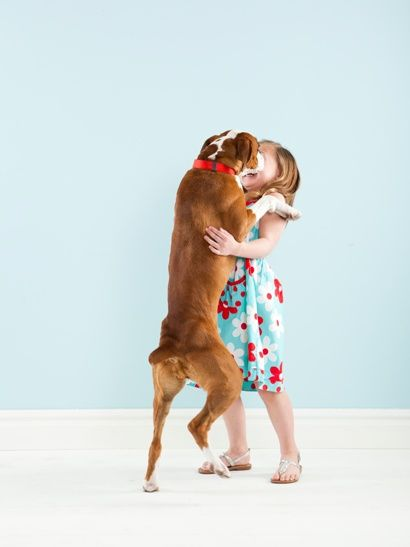 Boxer hug.  Our boxer loves to give us hugs...makes his day and our day too. :)