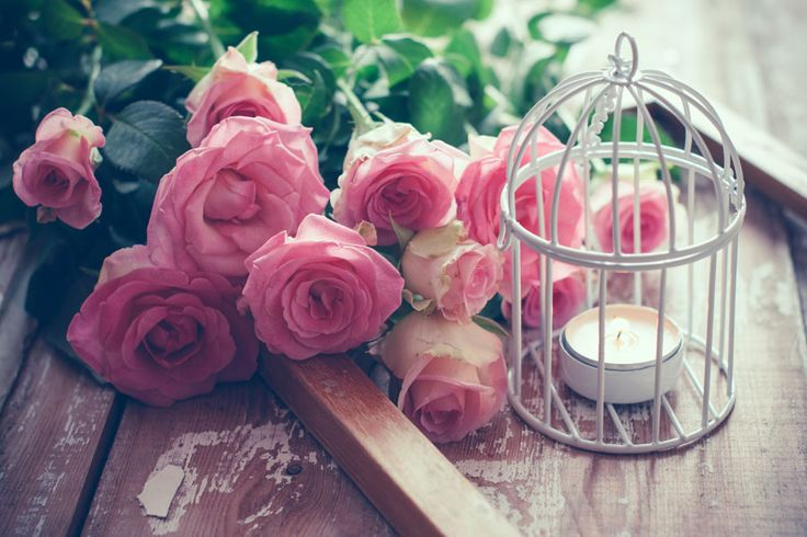 ***¿Cómo hacer Jaulas Decorativas?*** ¡Qué bellas son las aves libres!. Nos gustan tanto que hemos recopilado muchas ideas para usar jaulas vacías, con fines mucho más embellecedores para la vida. ¡Entra y conócelas!.....SIGUE LEYENDO EN.... http://comohacerpara.com/hacer-jaulas-decorativas_12588h.html