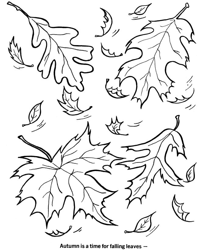 autumn season coloring page