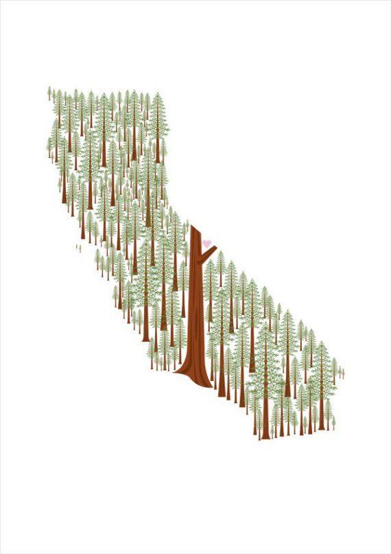 ca redwoodsCalifornia Redwood, California Girls, Trees Prints, Art, Illustration, States Prints, California Trees, Amy Ruppel, California States