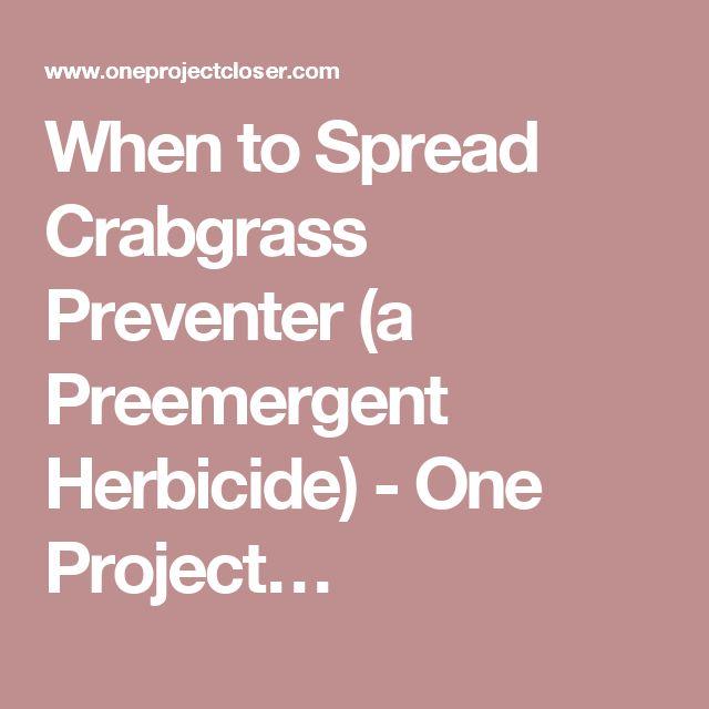 When To Spread Crabgrass Preventer A Preemergent Herbicide Grass