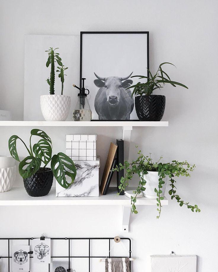 Workspase. Wall shelf. Plants.     #workspace#workspacegoals#scandihome#cozyhome#homedecoration#homeoffice#artprint#art#mood#whiteinterior#myhome#myroom#creativity#fantasy#blog#instahome#inspro#скандинавскийстиль#белыестены#белыйстол#рабочееместо#plants#растения