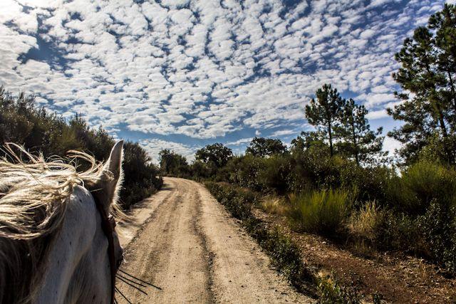 El Parque Tajo Internacional y sus actividades: paseo a caballo