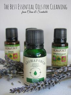 The best essential oils to use for cleaning.