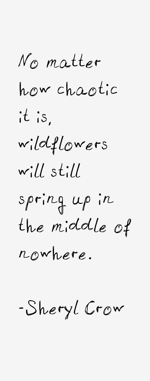 Inspirational Quotes: No matter how chaotic it is wild flowers will still spring up in the middle of nowhere