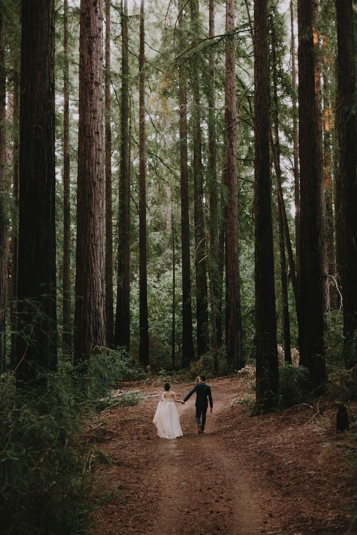 Beautiful wedding- no need for  decorations, the forest is more than enough.