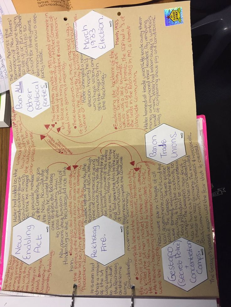 """Katie Wilson on Twitter: """"Using #solotaxonomy to explain Hitler's consolidation of power. Given a 5 ⭐️ rating by the students! #historyteacher #solohexagons #afl https://t.co/Pfi7nx67XE"""""""