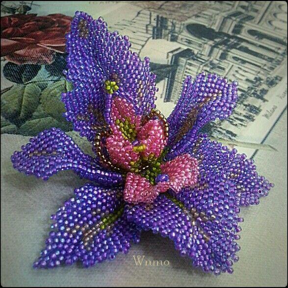 Purple orchid by Wnmo