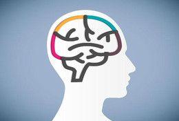Komunikace s lidmi v souladu s fungováním mozku