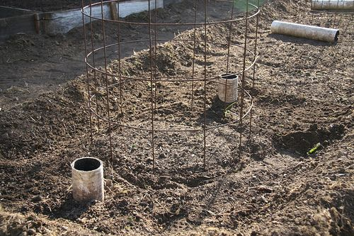 PVC tubes buried near tomatoes to water rootsGardens Ideas, Pvc Tube, Water Tomatoes, Sonoma Gardens, Plants Tomatoes, Growing Tomatoes, Tomatoes Plants, Pvc Pipe, Deep Water