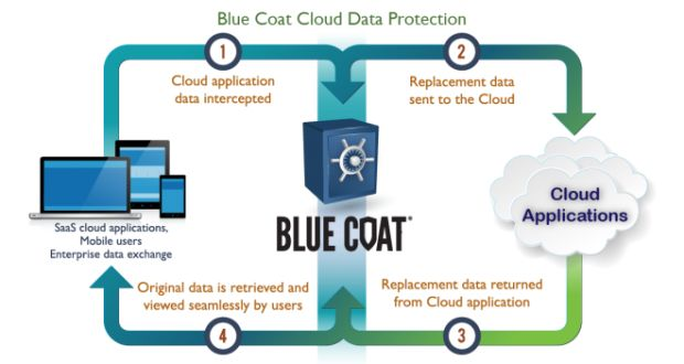 Salesforce Financial Services Cloud with Blue Coat Cloud Data Protection
