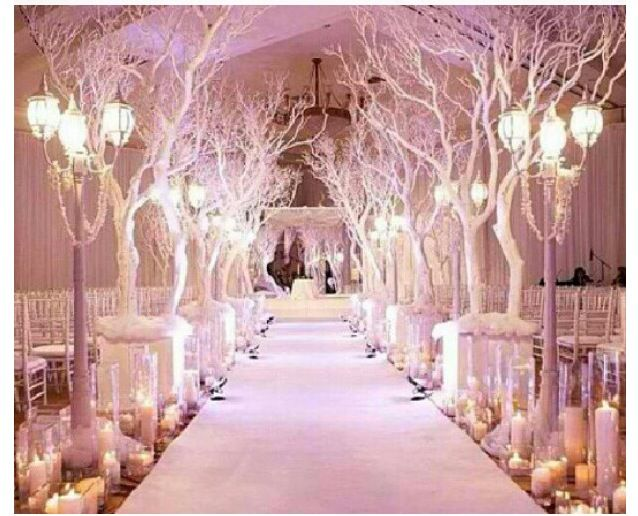 Luxury Wedding Indoor: Winter Wonderland Wedding Decor