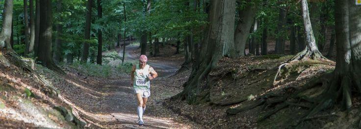 schorfheide-lauf.de - Marathon Alternative to Berlin Marathon