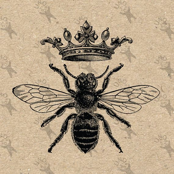 Vintage Image Queen Bee Queen Crown Printable Digital clipart instant download picture HQ 300dpi PNG and JPG prints (JPG images are on a white