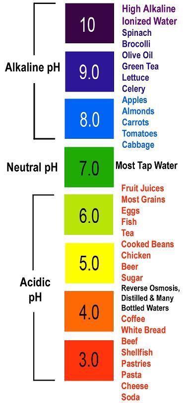"""pH Levels and Cancer, Alkaline and Acidic Foods - """"Research has shown that terminal cancer patients have an acidity level of 1,000 times more than normal healthy people.  Why is this? Without oxygen, glucose undergoing fermentation becomes lactic acid.  This causes the pH of the cell to drop to 7.0.  In more advanced cancer cases, the pH level falls further to 6.5 and can even fall to 6.0, 5.7 or lower.  Our bodies simply cannot fight diseases if our pH is not properly balanced."""""""