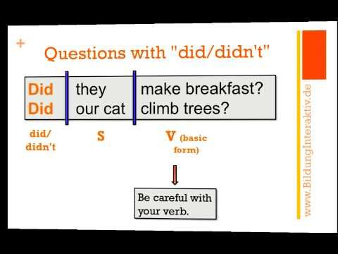 """Questions with """"did/didn't"""""""